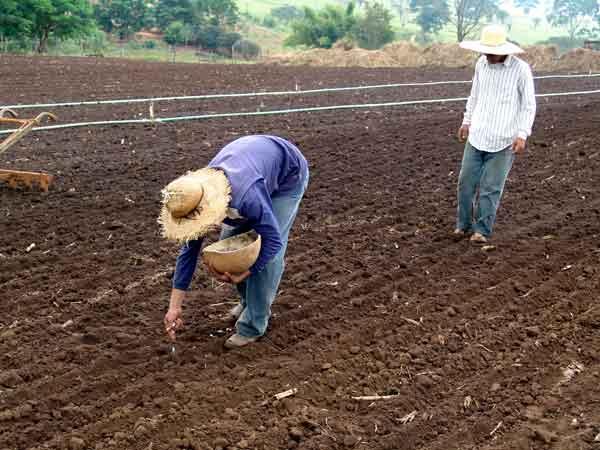 agricultura-familiar-agropecuaria-rural-trabalhador-regime