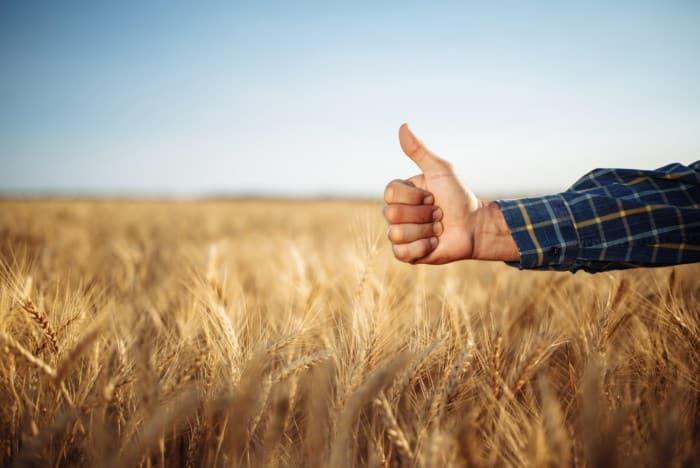 Tempo rural na CTC: entenda o valor da indenização
